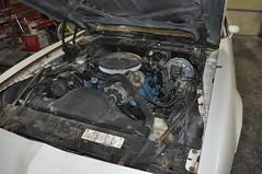 "1979 Pontiac Firebird • <a style=""font-size:0.8em;"" href=""http://www.flickr.com/photos/85572005@N00/19309174231/"" target=""_blank"">View on Flickr</a>"