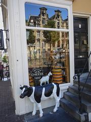 DSCN0376AW110 Cheese Shop © 2015 Paul Light (Paul Light) Tags: street urban holland reflection netherlands amsterdam cow storewindow cheeseshop