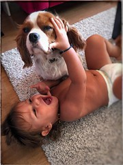 Baby & Dog.. (tameristan) Tags: baby love cute boy family happy adorable cutie dog kids puppy babies mylove mybaby pet dogs animal doglover doggy animals sweet mydog tameristan photograph photo canon nikon sony samsung