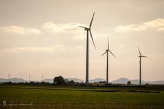 Grne Energie (iEiEi) Tags: sky nature clouds germany landscape deutschland nikon outdoor energie natur himmel wolken 1870mmf3545g nikkor landschaft rheinlandpfalz windkraft d300 sdpfalz rlzheim windkraftrder nikond300 ausenaufnahme energiewende grneenergie southernpalatinate ieiei