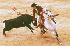 Corrida (enzoleone) Tags: corrida toro spagna matador