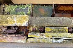 Structures . (Fijgje On/Off) Tags: water stone mos moss iron structures lichen ijzer steen breskens strukturen korstmos fijgje fotosuitzoekenensorteren panasonicdmctz30 juni2013 oudpontgat