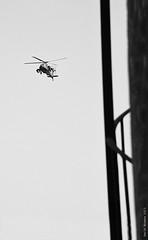 #30June 2013 Rebel    #egypt (Sierragoddess) Tags: city apache flag military jets egypt trails cairo revolution egyptian planes rebellion contrails skywriting tahrir frommybalcony 2013