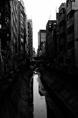 untitled (t-miki) Tags: tokyo takumar shibuya m42   pentaxk7