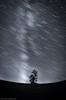 S O L O  -  IV (Silent G Photography) Tags: california nightphotography wine fisheye adobe astrophotography nik centralcoast winecountry vino pasorobles startrails milkyway reallyrightstuff rrs 2013 nikkor105mmfisheye bh55lr nikond7000 markgvazdinskas silentgphotography tvc33 silentgphoto