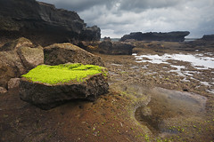 Green Carpet On A Rock (Born Amin) Tags: longexposure light sky bali cloud seascape green beach rock canon indonesia landscape view cloudy mossy leefilter canon5dmkiii mengeningbeach canon1635mkii leefiltergnd
