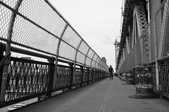Manhattan Bridge, Dumbo (nschaden) Tags: bridge blackandwhite bw silhouette landscape wide manhattanbridge brooklynbeta