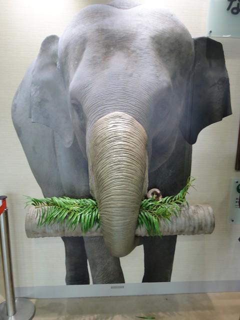 どうやって鼻を使って食べるかが分かりやすく展示されています。|名古屋市東山動植物園