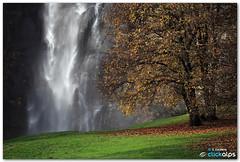 Acquafraggia (Finsty) Tags: alps waterfall val chiavenna cascate bregaglia acquafraggia