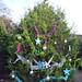 Trees_of_Loop_360_2013_025