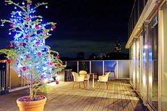 Christmas Tree of Nagaya Aoyama / NAGAYA AOYAMA (Dakiny) Tags: street city winter japan night landscape tokyo photo december sony cybershot photograph  nightscene nightview       carlzeiss 12    minatoward   2013  rx100   2013 dscrx100 sonycybershotdscrx100 minamiaoyama
