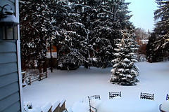 winter (carleigh~) Tags: life trees winter house snow love nature beautiful photography pretty seasons teenager