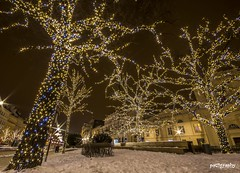 magic trees in Warsaw (patiigraphy) Tags: christmas street trees winter light snow night dark holidays pentax capital decoration sigma poland polska warsaw oldtown christmastime warszawa k5 ilumination staremiasto patii sigma1020 pentaxk5 patiigraphy