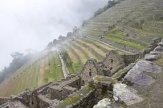 Machu Picchu, Peru (stopdead2012) Tags: mist peru ruins machupicchu slope