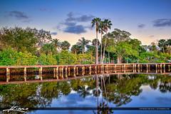 Shepard Park Palm Tree Stuart Florida Martin County (Captain Kimo) Tags: realestate florida stuart palm martincounty photomatixpro waterfrontproperty hdrphotography shepardpark captainkimo