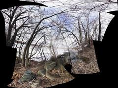 IMG0653iPH5  Rocks, Trees + Ice  © 2014 Paul Light (Paul Light) Tags: trees ice arlington rocks massachusetts arlingtonreservoir