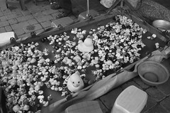 Fishing game. (_MoominSamon) Tags: life blackandwhite bw white holiday black game pool out toy duck bucket big fishing shoes panda legs many small taiwan ground memory float ours alot nikonfe2 changhua lowstool