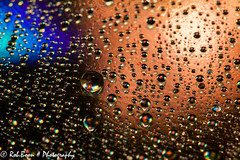 20140304_2944_CD-art (Rob_Boon) Tags: waterdrops cdart waterdruppel robboon