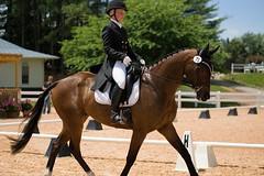 Virginia Dressage (Tackshots) Tags: virginia lexington horseshow dressage eventing horsetrials
