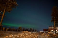 Northern lights on the sky (knipslog.de) Tags: arcticfalls arjeplog schnee schweden storforsen waterfall panorama polarlights snow winter ice reindeer caribou