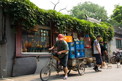 Hutong's life (People in Beijing) Tags: life china street tourism chinese beijing culture streetphotography tourists  hutong  tradition civilisation  urbanization chineseculture  hutongtour  urbanisation  beijinglife beijinghutong beijingstreet beijinger  citydevelopment  beijingculture beijingphoto    hutongtrip beijingerslife