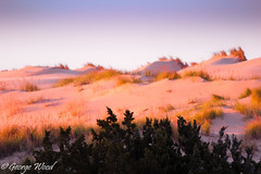 Jockey Ridge (Woody Writes) Tags: landscape dune