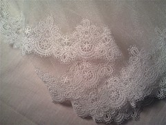 IMAG1616 (wzrdreams) Tags: veil lace trim