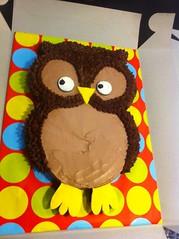 Owl Cake, Loudon County, Virginia, www.birthdaycakes4free.com