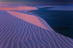 Pink sands, Lencois Maranhenses, Brazil. (AndersonImages) Tags: pink blue sunset brazil beach brasil sanddunes lencoismaranhenses michaelanderson