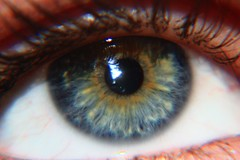 Auge (oliverjensen1) Tags: braun blau makro auge schwarz weis