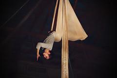 Asylum#11 (Mary Adrenaline) Tags: arizona phoenix performingarts madness immersive sling hanging nightmare inverted asylum installationart silks sitespecific aerialist aerialdance theicehouse 2013 vesselproject aerialhammock interactivetheatre laurenbreunig canont4i maryadart