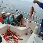 pescaria ,parceu dos pargos