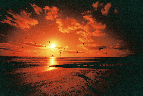 Redscale Beach