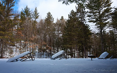 Waist Deep (anakin1814) Tags: park trees winter snow pine wisconsin river picnic tables pike amberg picnictables pikeriver davesfalls