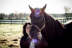 Jabez - Hockhockson Farm - XIV (Surreal-Journey) Tags: horse newjersey unitedstates monmouthcounty mothernature racehorse thoroughbred equine jabez coltsneck nikon18105mmf3556vr nikond7000 fancypantsdon damfancydancerjane darkbaygelding hockhocksonfarm sireprivateinterview