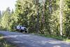 Neste Rally Finland 2015 Testing (neon-) Tags: test car racecar forest finland jump stage rally slide panning gravel drift testi ralli neste norf hassi ouninpohja