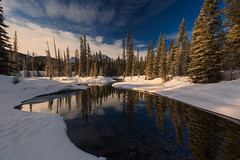A River near Castle Mountain (Saptashaw Chakraborty) Tags: canada alberta canon 6d 1635f4l winter landscape water river sunlight morning reflection reflections trees castlemountain banff banffnationalpark