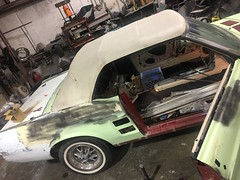 """1967 Ford Mustang Convertible • <a style=""""font-size:0.8em;"""" href=""""http://www.flickr.com/photos/85572005@N00/32748638424/"""" target=""""_blank"""">View on Flickr</a>"""