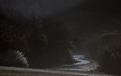 Cold spring morning (A child in the night) Tags: cold spring morning mere astbury cheshire landscape walk england