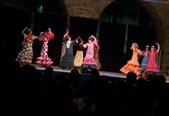 Dance show in Koper (rlubej) Tags: primorska night people