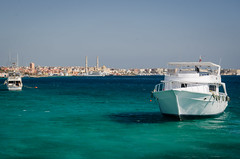 let's go diving (BasuMitra) Tags: redsea egypt hurghada sailing diving scubadive
