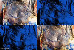 carnival chest (blacqbook) Tags: carnival paint mud chest reveler colorful woman texture body costume jouvert messy streetparty tanktop festival black culture caribbean abstract lines closeup blue yellow red blacqbook trinidad