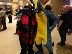 Sabre Takumori Side-by-Side (sabredragonfa) Tags: sabre dragon sabredragon takumori taku blue gold western fursuit suit further confusion 2017 fur con furcon furcon2017 fc2017 zaelgolin