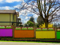 Happy Fence Friday! (peggyhr) Tags: peggyhr hff colourful trees yellow orange purple green blue white clouds sky grass buildings dsc09090a vancouver bc canada level1peaceawards super~sixbronze☆stage1☆