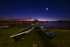 YOU ARE NOT ALONE (jopetsy) Tags: alabang muntinlupa philippines sunrise fish boat landscape landscapes seascape seascapes lake bridge log