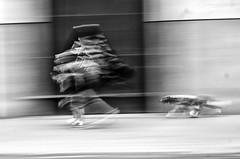 Santiago de Chile (Alejandro Bonilla) Tags: santiago chile street city urban dog sony santiaguinos santiagodechile sam streetphotography santiagochile santiagocentro sonya290 urbano urbana urbe urbex bw blancoynegro bn blackandwhite black regiónmetropolitana a290 alfa alejandrobonilla alameda atardecer protesta protest plazaitalia perro photography