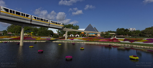 Flower and Garden Monorail Monday