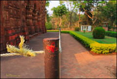 Perimeter Fencing. (soumen19xx) Tags: life trip travel trees shadow red india plant blur color green grass leaves closeup digital photoshop canon fence garden geotagged photography eos yahoo google stem focus asia branch natural photos outdoor pillar creative rope growth trunk historical 1855mm t3 chlorophyl cs3 defocus stillphotography 1100d