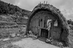 A Toda Mund (Hut) - somewhere in the Nilgiris.