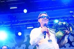 Reino Helismaa -sanoittaja- ja viihdepalkinto